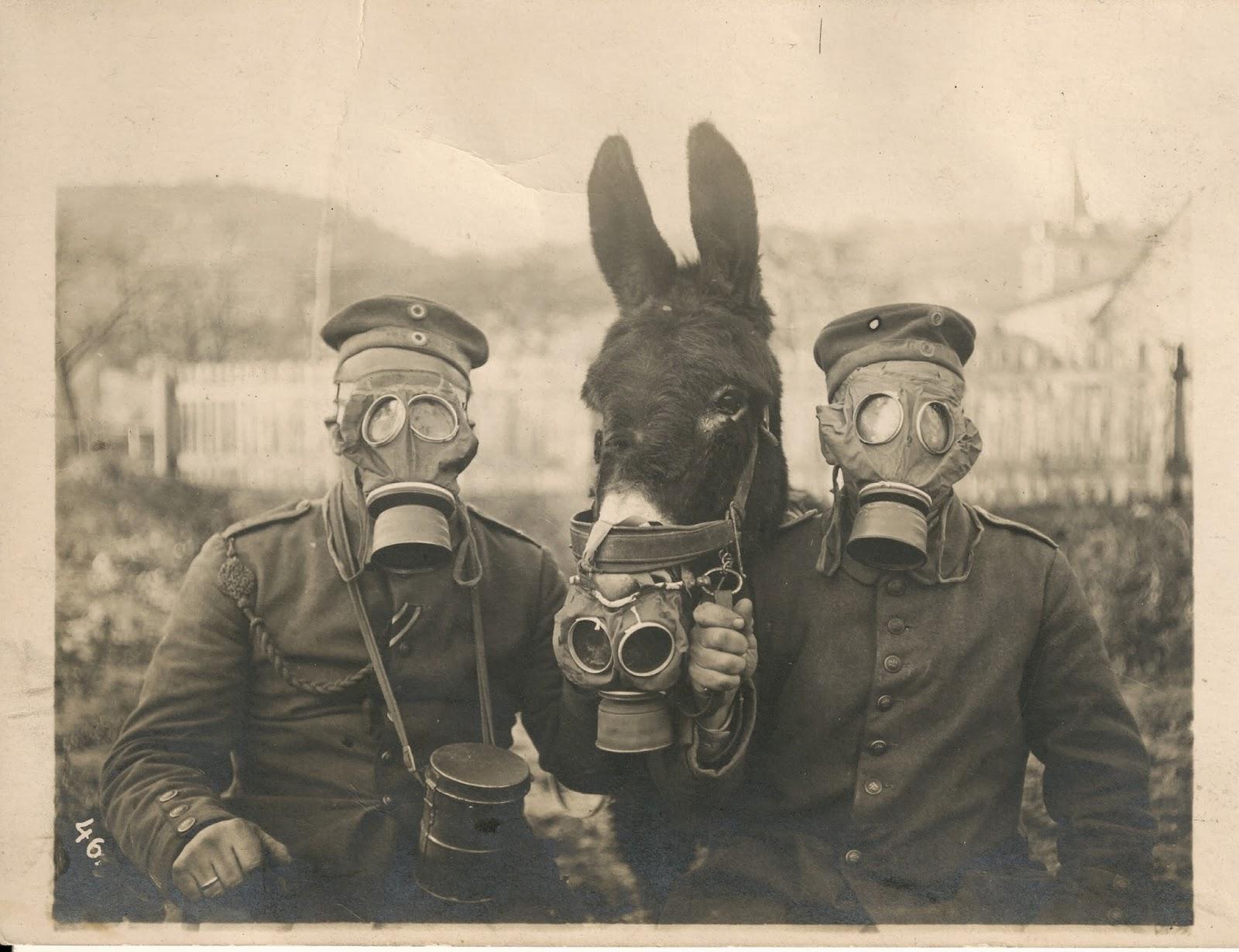 Una storia mai raccontata: i gas italiani nella Prima guerra mondiale
